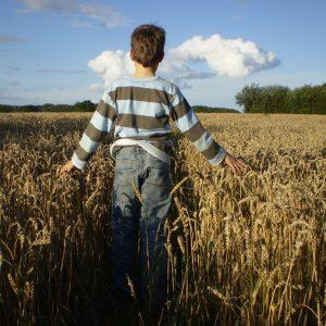 Brot backen Junge im Getreide