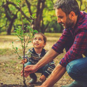 Foerderverein-AMSEL-Elternmitwirkung