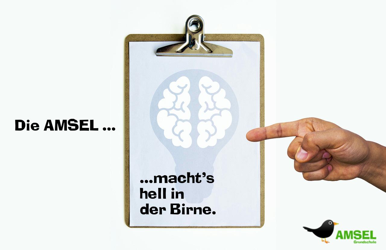 Gehirn-in-Gluehbirne-Amsel