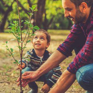 Vater-und-Sohn-pflanzen-einen-Baum